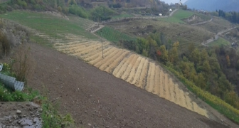 FOOD PRODUCTION FOR LOCAL PEOPLE